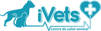 iVets Centre Veterinari